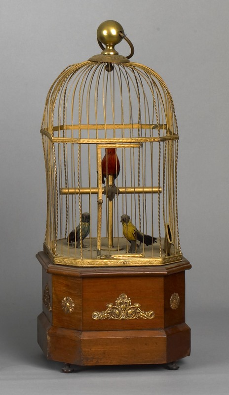 French musical bird box, late 19th c., coin operat
