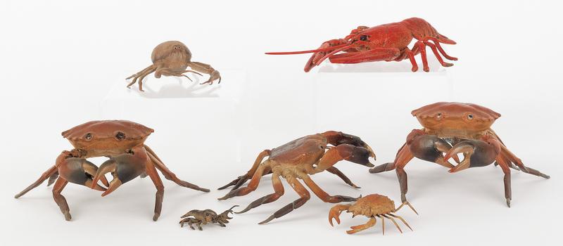 Seven Austrian cold painted bronze crustaceans, mi