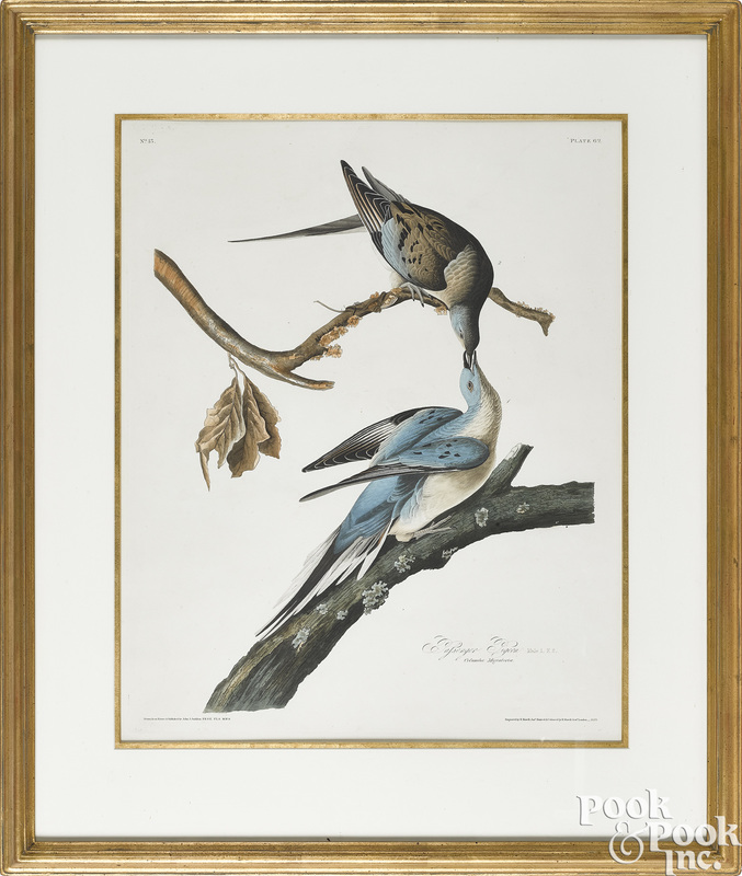John James Audubon engraving