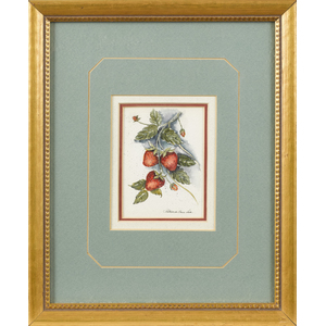Watercolor still life of strawberries, signed Patr
