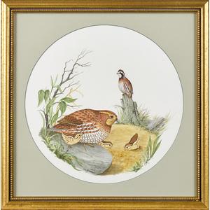 Watercolor portrait of a quail family, signed M. K