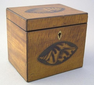 Regency tiger maple veneer tea caddy, ca. 1800, th