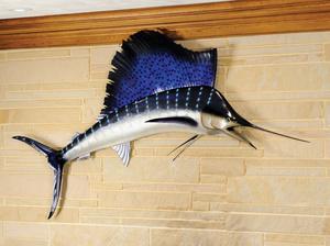 Large sailfish mount, taken in Baja California.