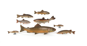 Eight Austrian cold painted bronze salmon, mid 20t