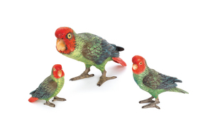 Three Austrian cold painted bronze parrots, mid 20