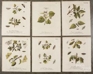 Six engravings