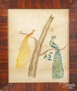 Pennsylvania bird of paradise watercolor