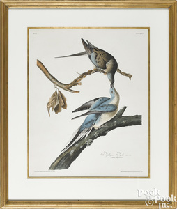 John James Audubon engraving