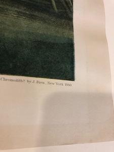 After John James Audubon, chromolithograph