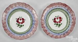 Adams rose spatter plate and shallow bowl