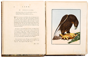 William Lewin Birds of Great Britain first edition