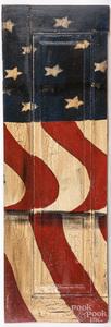 Patriotic painted shutter