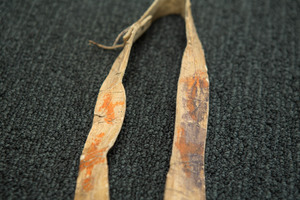 Southern plains Indian bow, bow case and quiver,